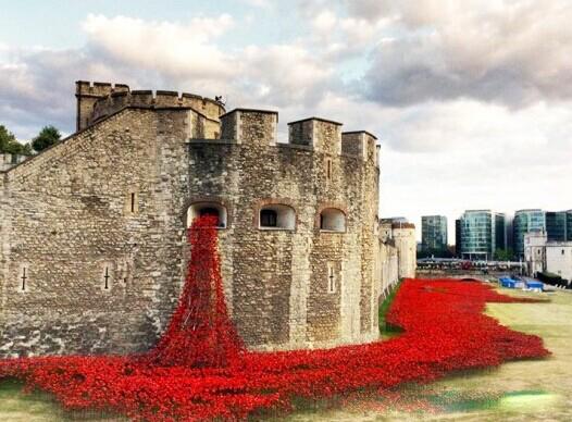 """罂粟花开,绽红盛放。为了纪念一战爆发一百周年,英国在伦敦塔城墙周围布置陶瓷罂粟花。       8月5日到11月11日,童鞋们可以一起到伦敦塔桥去看罂粟花海。80万朵罂粟花将在这里绽放,在此期间,一战期间180名牺牲战士的名字将在每日黄昏之时被一一朗诵出来,以此来缅怀历史。这些罂粟花将会每天增加,直到11月11日历史上一战结束的日子,所有的80万朵罂粟花才会全部布满。之后将以慈善募捐的形式售卖。   凯特王妃、威廉王子和哈利王子也去那里""""种""""了花。 另外再给大家普及一下,很多同学"""